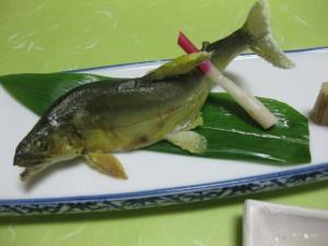 焼物:鮎塩焼き